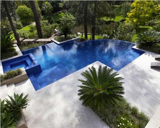 101 best images about pool landscapes on pinterest pool for Pool design 101