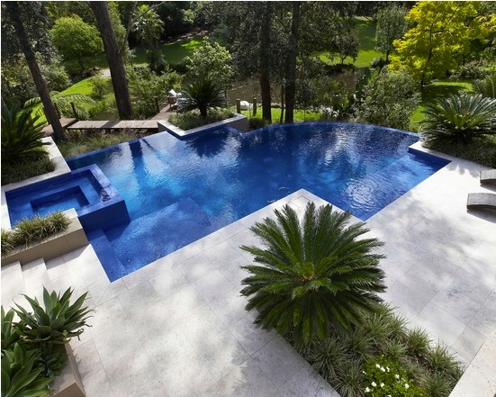 101 best images about pool landscapes on pinterest pool for Pool design 101