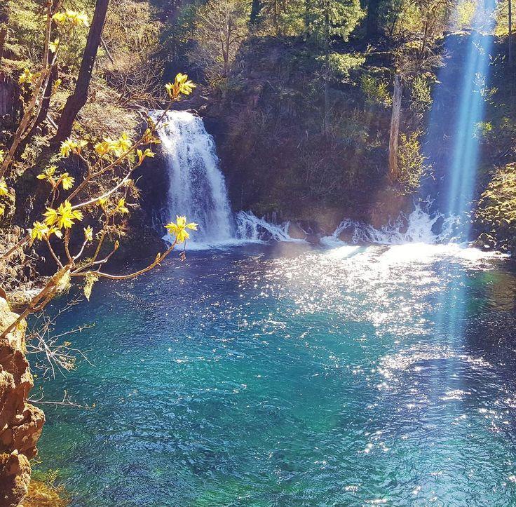 The 25+ best Blue pool oregon ideas on Pinterest Tamolitch pool
