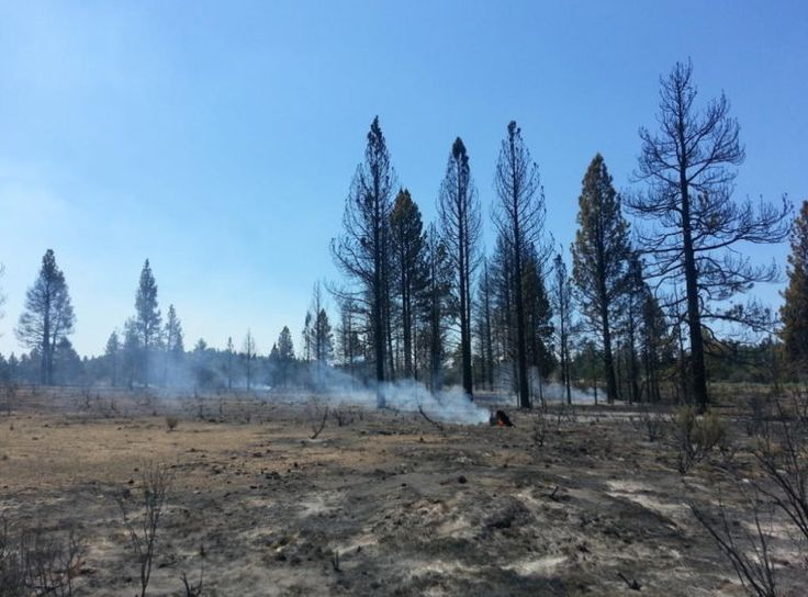 Mocassin Hill Wildfire | Wildfire Six homes destroyed in wildfire north of Sprague River