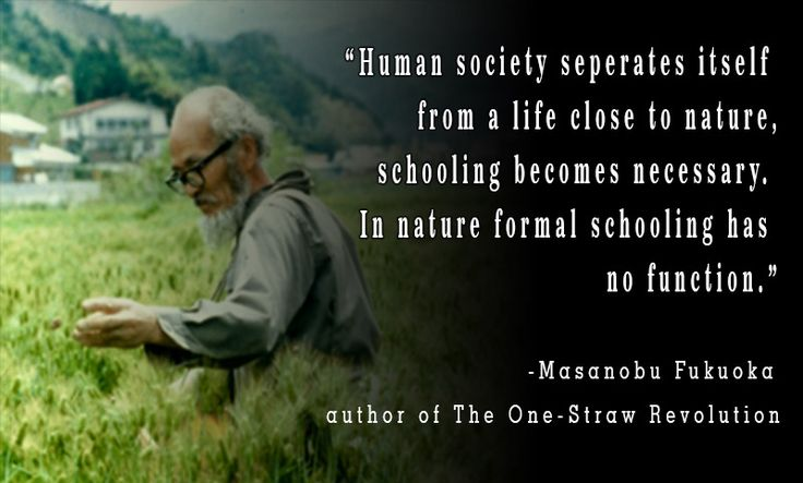 Masanobu Fukuoka - The One Straw Revolution