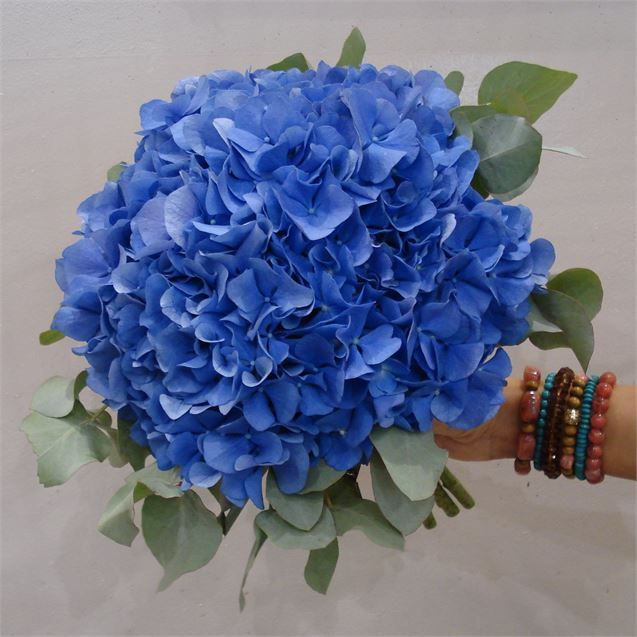 Blue Hydrangea Bridal Bouquet - Sally Rose Studio - Bespoke Stationery and Floral Design