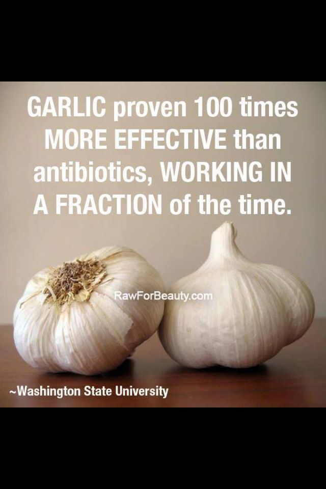 use garlic instead of antibiotics. There's no harsh side effects or damage to the gut flora.