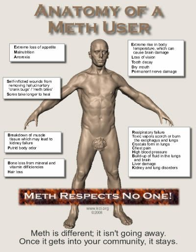 The Anatomy Of A Meth User  #addiction #drug #abuse #help