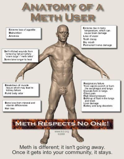 The Anatomy Of A Meth User  #addiction #drug #abuse #help