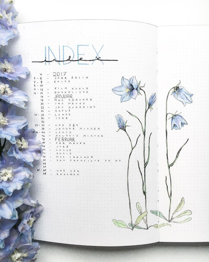 Check out this simple but elegant bullet journal index. Using simple, understated florals makes this spread pop.
