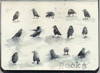 Rooks dancing. Watercolour, Kathy Lewis