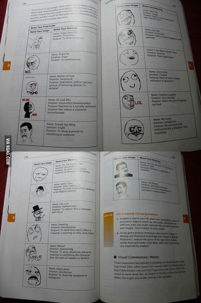 """Meme face field guide"" in English textbook."