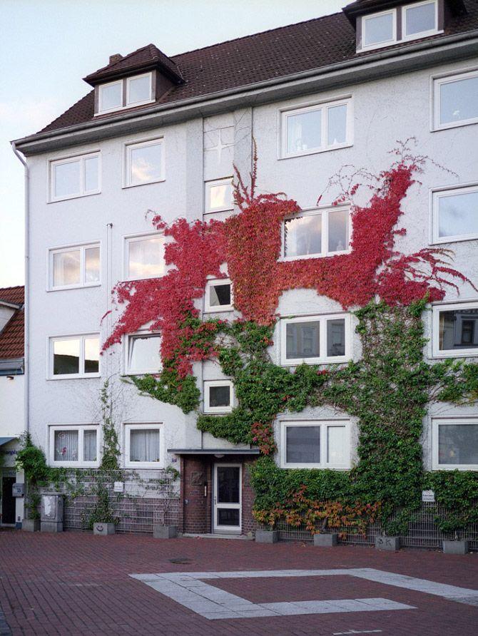 Όταν η φύση συναντά την αρχιτεκτονική