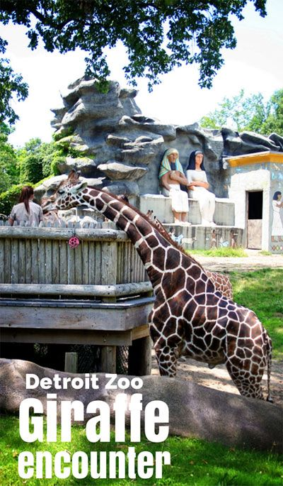 Detroit-Zoo for all families!