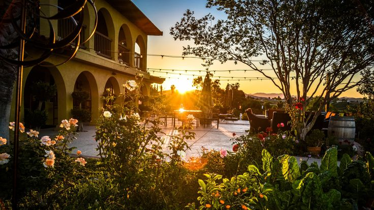 Best Wineries to Visit in Temecula Valley