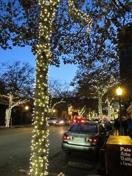 Palo Alto, California, during the holidays!
