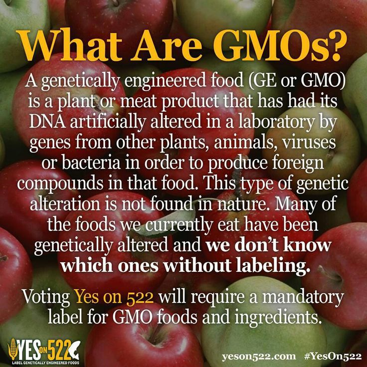 genetically modified foods and ingredients 2 essay They are all some of the most commonly genetically modified foods sold on genetically modified food essay that might have genetically altered ingredients.