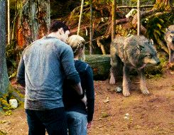 """"""" Dialogue/Scenes you shouldn't miss just because they're not in focus ♣ Emmett kissing Rosalie goodbye before kicking jasper's butt """""""