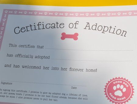 Free printable dog adoption kit | Alexis 9th bday | Puppy ...