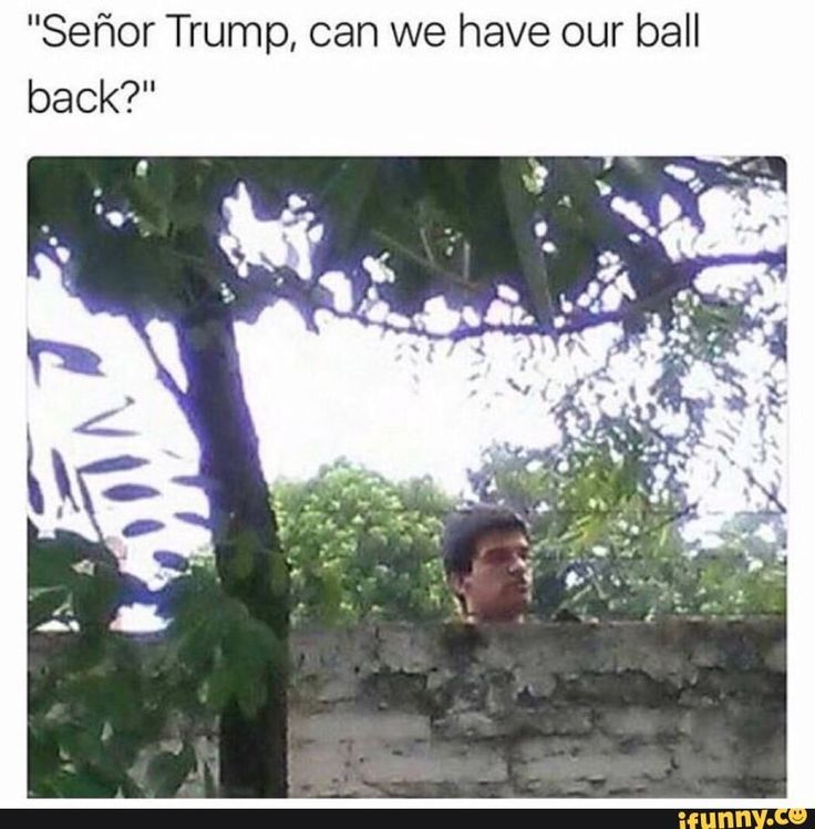 Is it wrong to post this?! I hate Trump but this is hilarious!