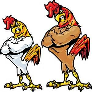 Angry fighting Chicken Cartoon - Bing images
