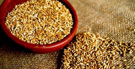 Il seme che fa perdere peso, tratta il diabete e depura fegato e reni