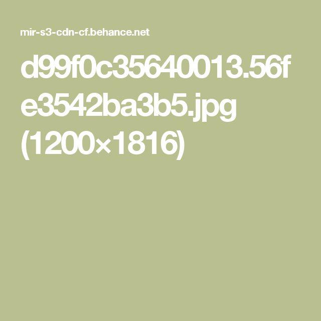 d99f0c35640013.56fe3542ba3b5.jpg (1200×1816)