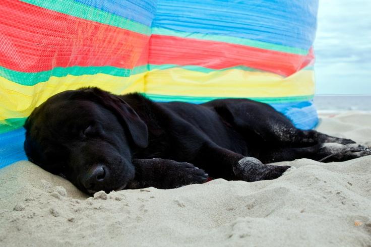 Op het strand: uitrusten na het ballen