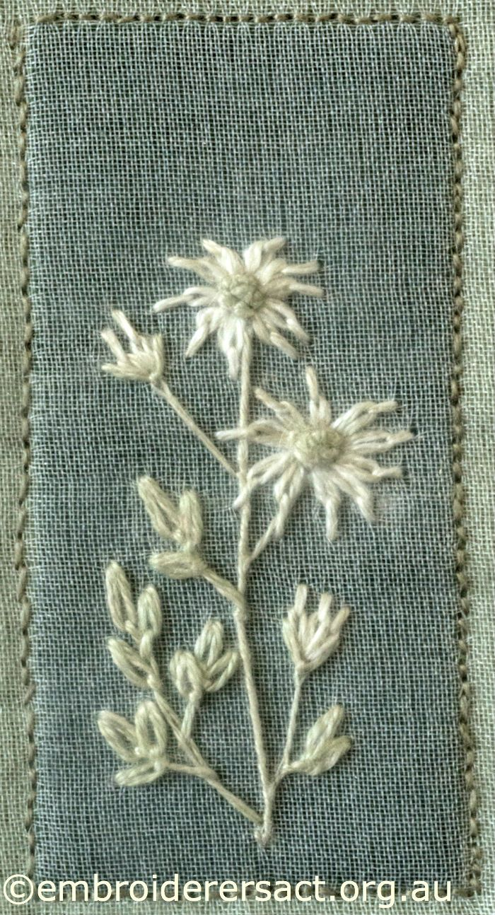 Flannel Flowers from Australian Landscape and Flora stitched by Lorna Loveland
