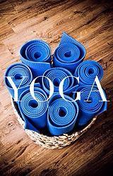 Tag 11/1000 - Karma Yoga @ AOZ