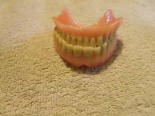 Real Dentures False Teeth Upper & Lower Choppers Dental Student Study Gag…
