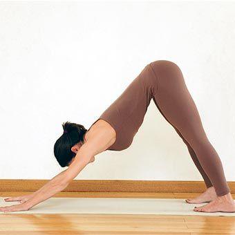 El reto de esta postura es llevar los isquiones a los talones y la frente al suelo. Para que esto ocurra, deben estirarse varios grupos musculares como los extensores de la columna, el glúteo mayor, el piramidal, los isquiotibiales, los glúteos menor y mediano, el tibial anterior, el peroneo, el extensor común de los dedos (del pie) y en los pies, los extensores largo y corto propios del dedo gordo. #AsanaPerro #MejorPostura #Beneficios