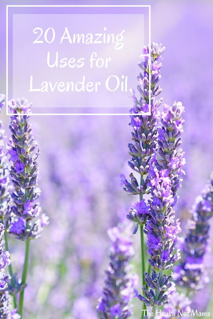 20 Uses For Lavender Oil The Health Nut Mama In 2020 Lavender Oil Uses Lavender Oil Oils