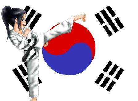 Resultado de imagen para taekwondo kicks animated  girl