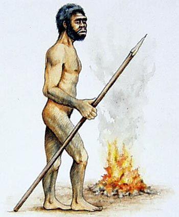El Homo Erectus es llamado así por tener una posición recta, erecta al caminar, también se caracterizo por el ser uno de los primeros homínidos en producir y usar el fuego.