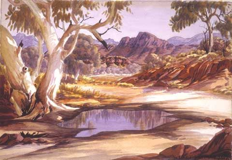 Anthewerre by Albert Namatjira