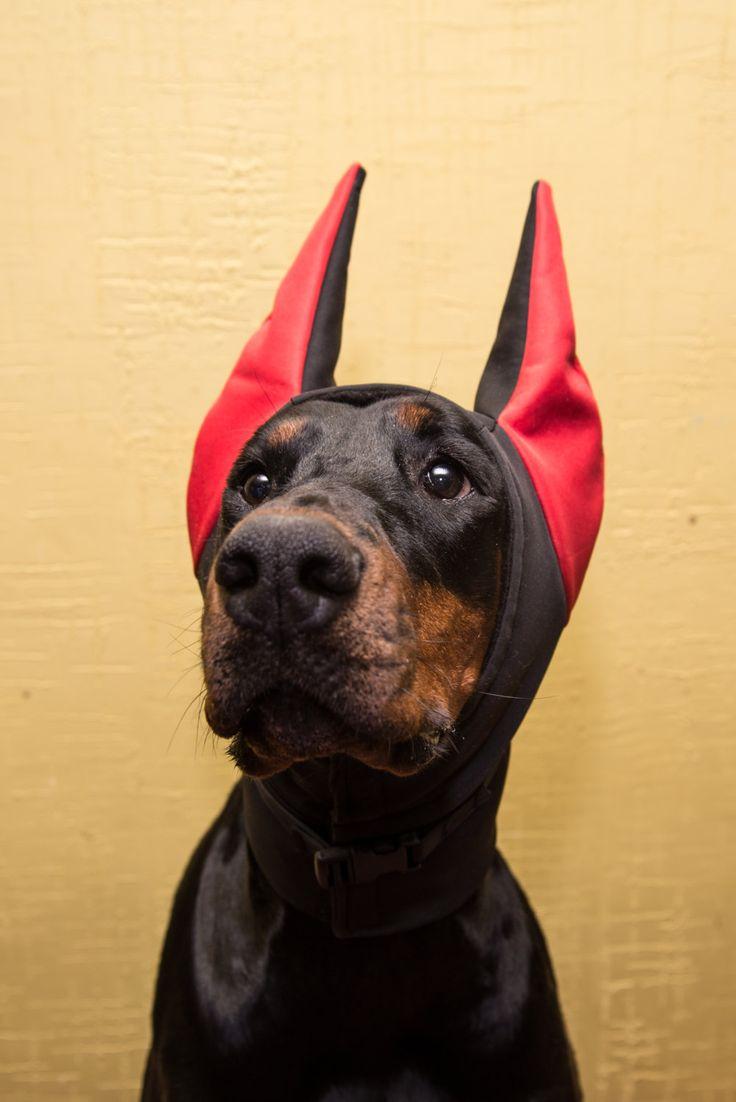pet gift doberman winter hat doberman warmer dog hat