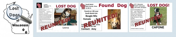 This is a wonderful organization that works tirelessly to reunite lost dogs with their families.