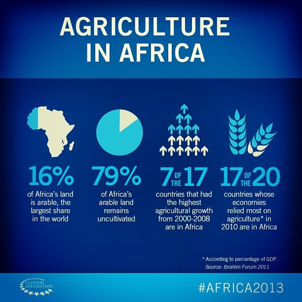 Did you know that 7 of the 17 countries that had the highest agricultural growth from 2000-2008 are in Africa? #Africa2013 by clintonfoundation
