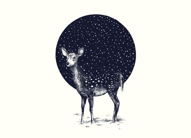 Snow Flake // This is a recent print from threadless that Anthony and I both love.  We definitely share a love for animals and it has a winter-vibe.  Winter has always been a magical season for us :) <3
