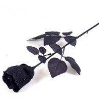 Black Fabric Rose $10.95 A243614