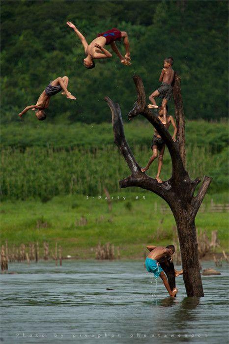 Salto en grupo y desde un árbol.