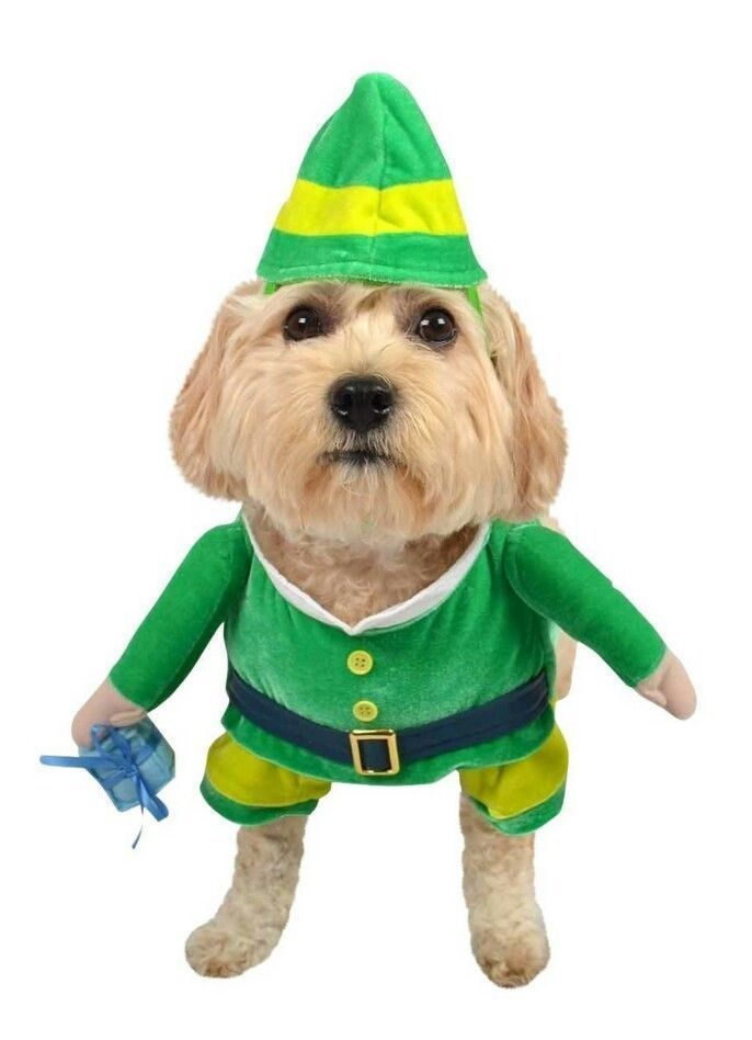 "Green Leprechaun or Elf Dog/Pet Costume Outfit with Hat. Just remove the present from his hand and he makes an awesome Leprechaun! Size L up to 90 lbs (40.8 kg) - length: 22"" (55.8 cm), girth: 26-40"" (66-101.6 cm), neck: 16-28"" (40.6-71.1 cm) - Fits most large breeds including: Golden Retriever, Labrador Retriever, German Shepard, Boxer, Pit Bull, Dalmation. 