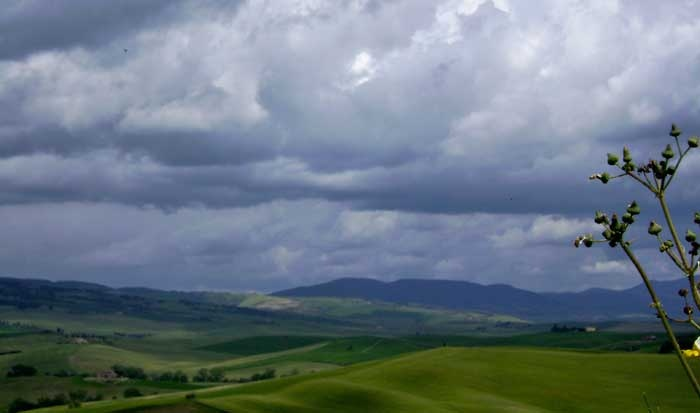 "Val d'Orcias' off leash nature walk: a rain storm is approching. The light is stunning! Isn't it? Passeggiata guidata ""Off Leash"" (senza guinzaglio) in Val d'Orcia. Un temporale si sta avvicinando. La luce è sublime, vero?"