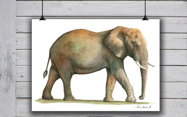 POSTER PRINT - African Elephant- Male Elephant - African animal - wild animal art watercolor poster print -by Juan Bosco by SanMartinArtsCrafts on Etsy