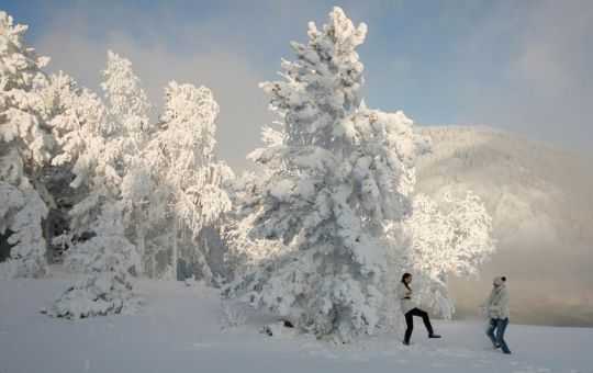 photos by ilya naymushin from his home in krasnoyarsk, a city of nearly a million people located along the yenisei, a river which flows over three thousand miles from its source in mongolia through siberia before emptying out into the arctic ocean. as temperatures in the siberian city drop, steam comes off the river, coating the surrounding trees in hoarfrost.