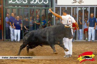 torodigital: Los festejos taurinos llegan a su ecuador en la p...