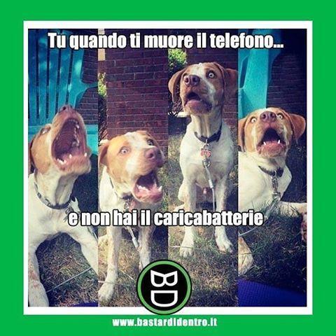 Non esiste disperazione maggiore! #bastardidentro #telefono #batteria #ipnoticamentebastardidentro www.bastardidentro.it