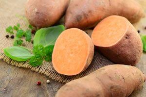 Süßkartoffeln Anbautips