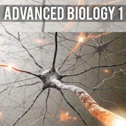 Advanced Biology 1