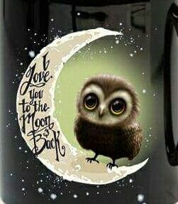 I love you to the Moon and Back Owl ~