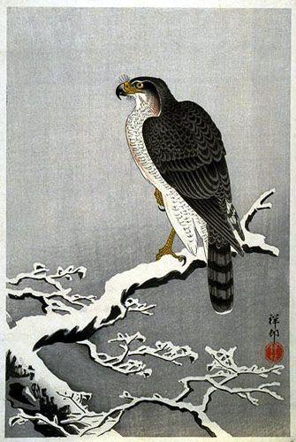 Hawk in Snow by Ohara Koson