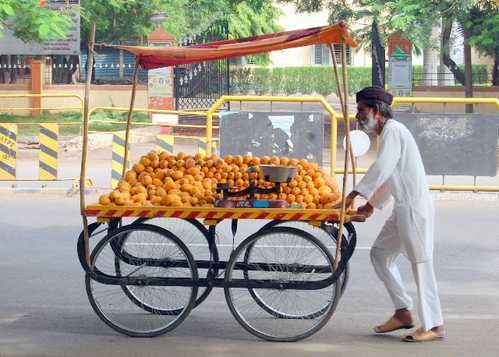 """King of fruits """"Mango"""" season now at end. An Old aged fruit seller ..."""