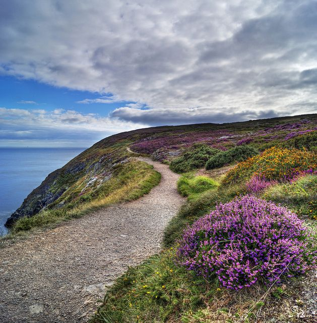Hike to Howth Summit - Vertorama by TylerPPorter, via Flickr; http://www.flickr.com/photos/tylerpporter/6156498297/in/photostream